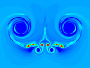 Wing Vortices image